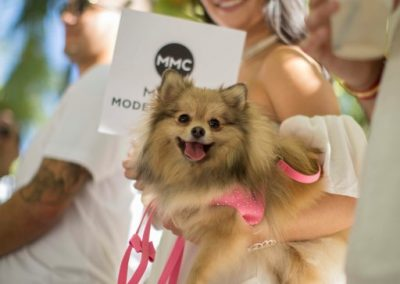 miami-model-citizens-doggies-divas-fashion-show-2017-23