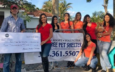 Born Free Pet Shelter in Homestead