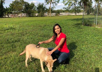 miami-model-citizens-born-free-pet-shelter-9